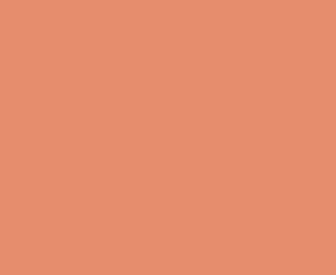 Dieses Orange ist die Kontrastfarbe im Corporate Design von Flyer Texter Tim Allgaier